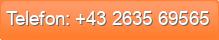 Telefon: +43 2635 69565